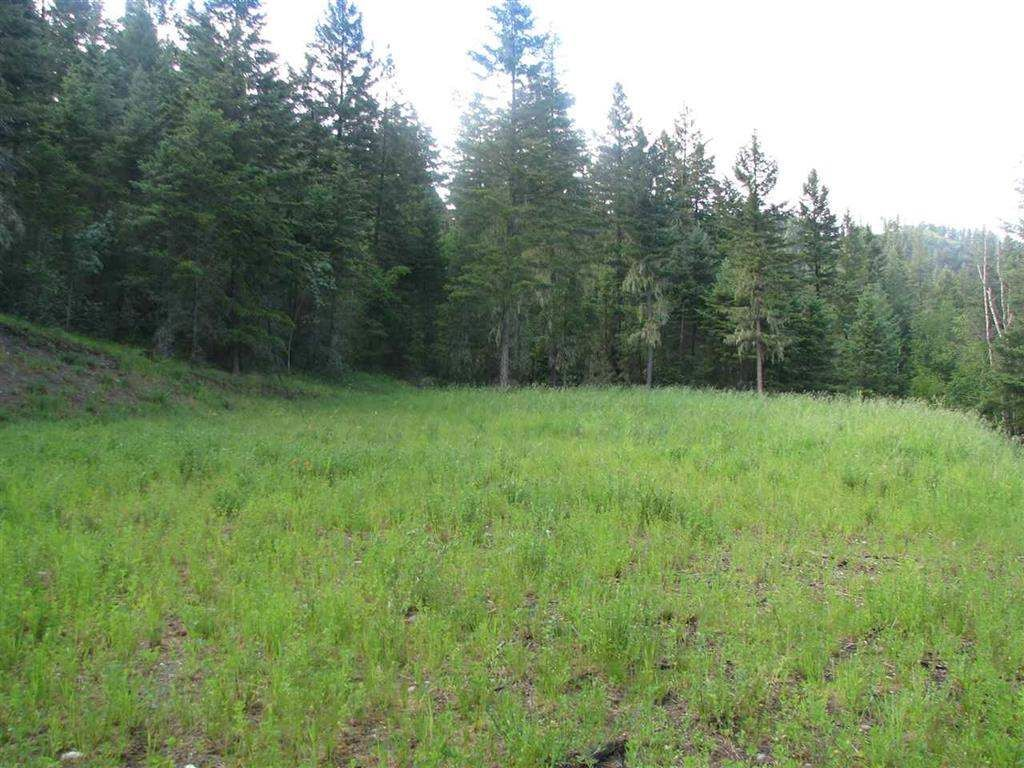 "Main Photo: 446 WOODLAND Drive in Williams Lake: Williams Lake - City Land for sale in ""WOODLAND DRIVE"" (Williams Lake (Zone 27))  : MLS®# R2342332"