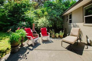 Photo 6: 21314 123 Avenue in Maple Ridge: West Central House for sale : MLS®# R2482033