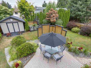 Photo 16: 20341 WALNUT Crescent in Maple Ridge: Southwest Maple Ridge House for sale : MLS®# R2199123