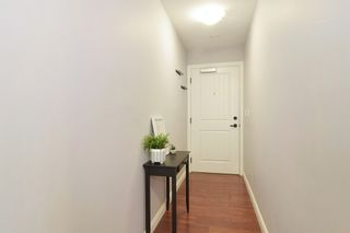 "Photo 17: 236 5660 201A Street in Langley: Langley City Condo for sale in ""Paddington Station"" : MLS®# R2536541"