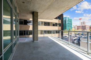 Photo 25: 304 530 12 Avenue SW in Calgary: Beltline Apartment for sale : MLS®# A1113327