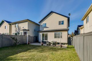 Photo 31: 11 Bridlewood Gardens SW in Calgary: Bridlewood Detached for sale : MLS®# A1149617