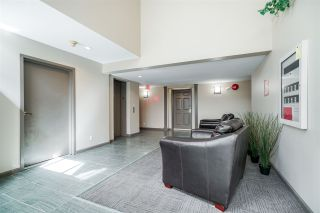 Photo 4: 205 6860 RUMBLE Street in Burnaby: South Slope Condo for sale (Burnaby South)  : MLS®# R2334875