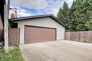 Photo 38: 1351 Idaho Street: Carstairs Detached for sale : MLS®# A1040858