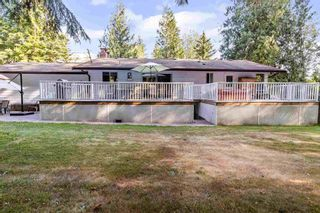 Photo 5: 36241 DAWSON Road in Abbotsford: Abbotsford East House for sale : MLS®# R2600791