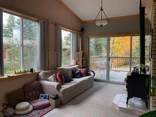 Photo 49: 80 CALANDAR Road NW in Calgary: Collingwood Detached for sale : MLS®# C4262502