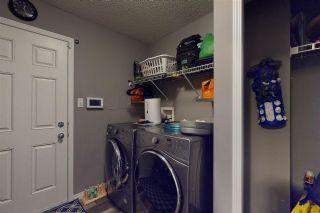 Photo 15: 1530 37B Avenue in Edmonton: Zone 30 House for sale : MLS®# E4228182