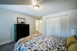 Photo 36: 10907 WILLOWFERN Drive SE in Calgary: Willow Park Detached for sale : MLS®# C4304944
