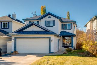 Main Photo: 323 Mt Brewster Circle SE in Calgary: McKenzie Lake Detached for sale : MLS®# A1154881