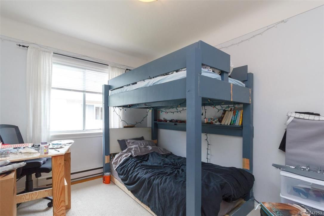 Photo 20: Photos: 2546 Garden St in Victoria: Vi Oaklands Full Duplex for sale : MLS®# 844253