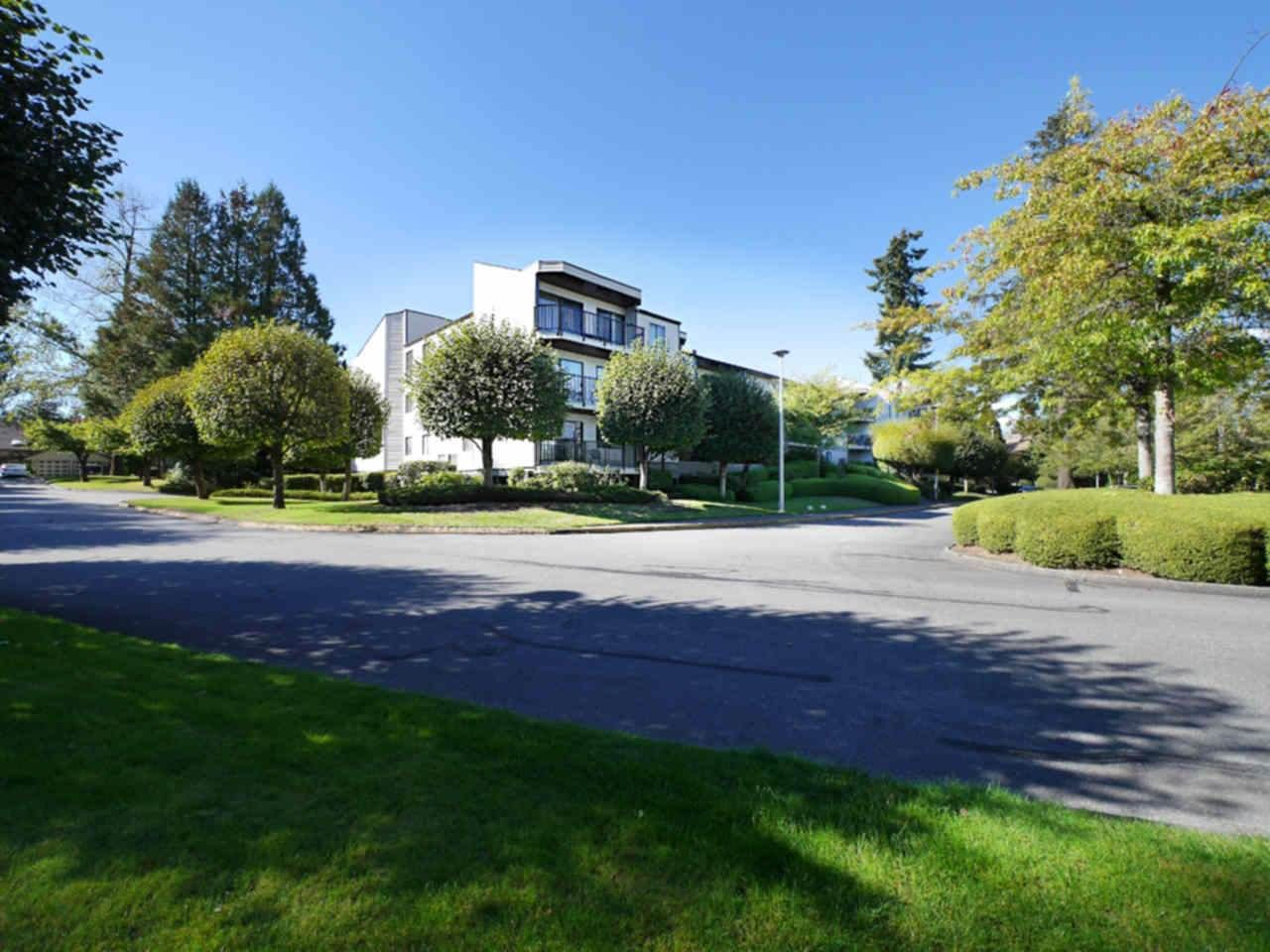 """Main Photo: 213 9952 149 Street in Surrey: Guildford Condo for sale in """"Tall Timbers"""" (North Surrey)  : MLS®# R2111678"""