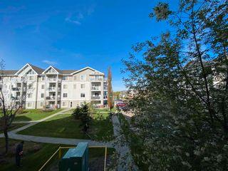 Photo 33: 216 15211 139 Street in Edmonton: Zone 27 Condo for sale : MLS®# E4244901