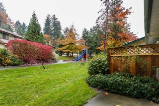 Photo 20: 35 21960 RIVER Road in Maple Ridge: West Central Townhouse for sale : MLS®# R2118565