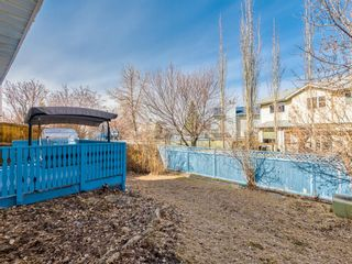 Photo 36: 64 Sanderling Hill in Calgary: Sandstone Valley Detached for sale : MLS®# A1090715