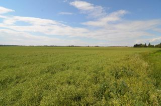 Photo 13: 59328 RR 212: Rural Thorhild County House for sale : MLS®# E4259024