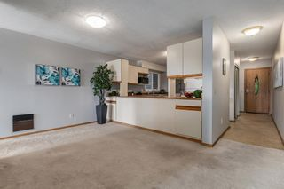 Photo 12: 203 333 2 Avenue NE in Calgary: Crescent Heights Apartment for sale : MLS®# A1077387