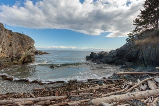 Photo 74: 474 Foster St in : Es Esquimalt House for sale (Esquimalt)  : MLS®# 883732