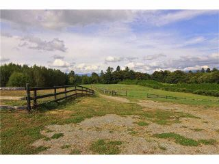 Photo 17: 30041 HARRIS Road in Abbotsford: Bradner House for sale : MLS®# F1447614