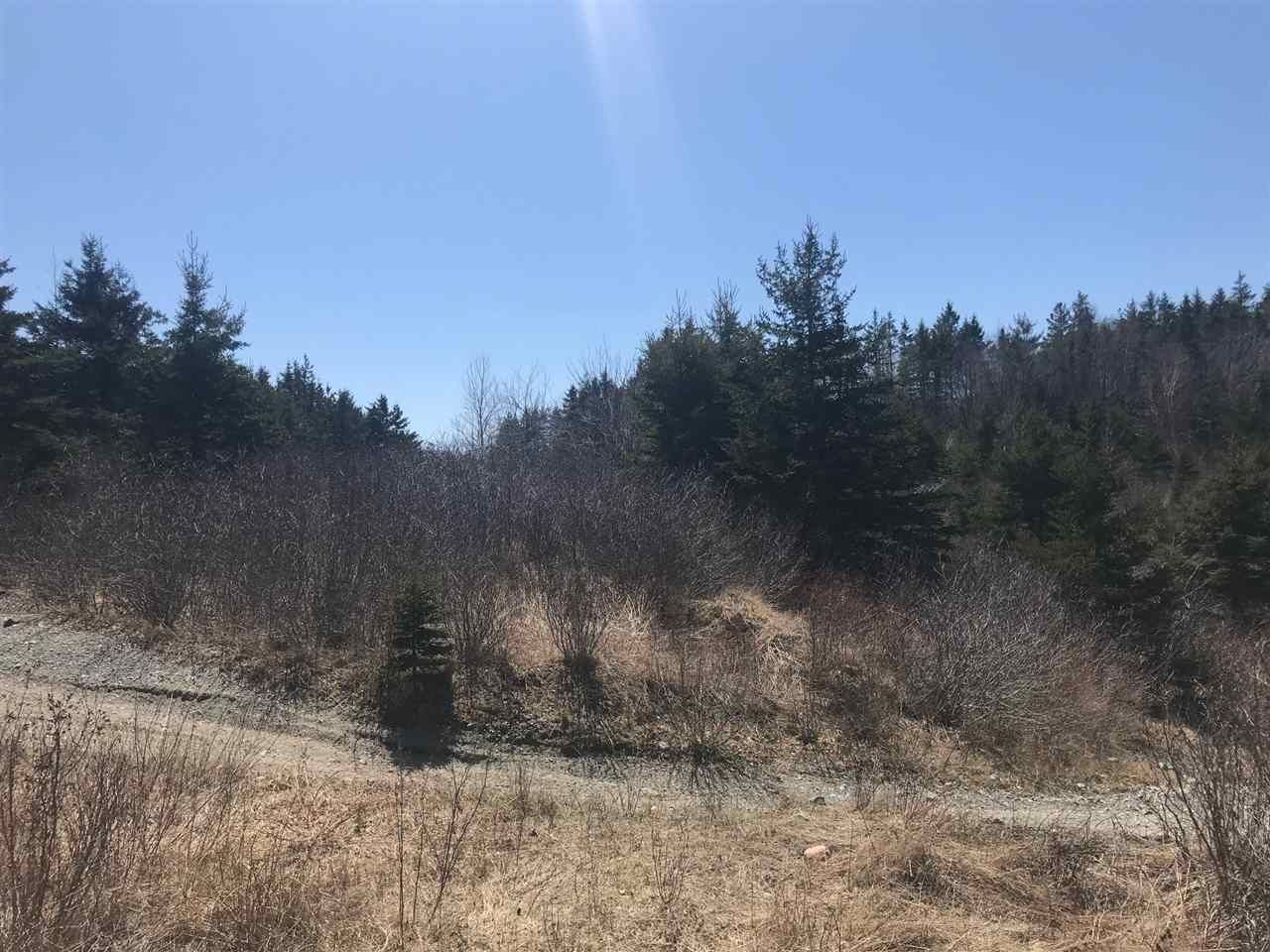 Photo 2: Photos: 11574 Highway 7 in Lake Charlotte: 35-Halifax County East Vacant Land for sale (Halifax-Dartmouth)  : MLS®# 201927372