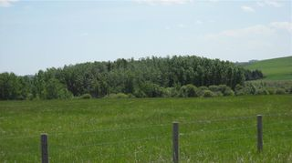 Photo 3: NONE-80 Street & 226 Ave-Rural Foothills County-