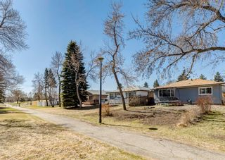 Photo 42: 3042 30A Street SE in Calgary: Dover Detached for sale : MLS®# A1097578