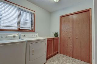 Photo 23: 207 EDGEBROOK Close NW in Calgary: Edgemont Detached for sale : MLS®# A1021462
