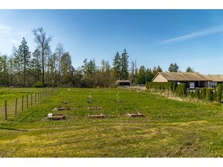 Photo 35: 22470 64 Avenue in Langley: Salmon River House for sale : MLS®# R2570011