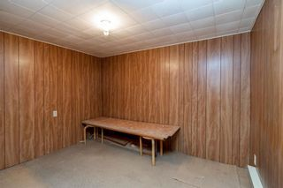 Photo 18: 81 Morley Avenue in Winnipeg: Riverview Residential for sale (1A)  : MLS®# 202012732