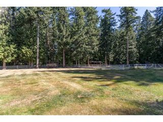 Photo 31: 2186 198 Street in Langley: Brookswood Langley House for sale : MLS®# R2489409