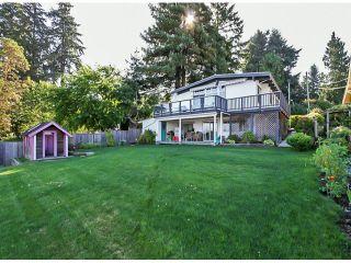 Photo 6: 10549 RIVER Road in Delta: Nordel House for sale (N. Delta)  : MLS®# F1419662