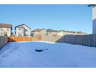 Photo 18: 249 BRIDLEMEADOWS Common SW in CALGARY: Bridlewood Residential Detached Single Family for sale (Calgary)  : MLS®# C3601900