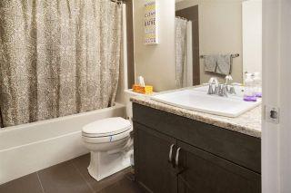 Photo 35: 6405 ELSTON Loop in Edmonton: Zone 57 House for sale : MLS®# E4224899