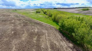 Photo 8: Twp Rd 290: Rural Mountain View County Land for sale : MLS®# C4278326