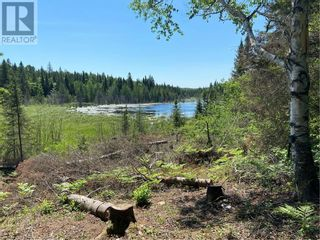 Photo 1: N/A RANEY Road E in Sundridge: Vacant Land for sale : MLS®# 40129602