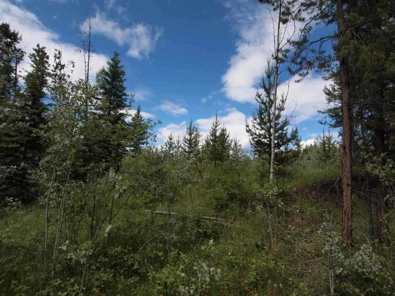Photo 4: Photos: 4573 BAKKEN Road: Forest Grove Land for sale (100 Mile House (Zone 10))  : MLS®# R2377308