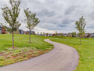 Photo 37: #3413 755 COPPERPOND BV SE in Calgary: Copperfield Condo for sale : MLS®# C4086900