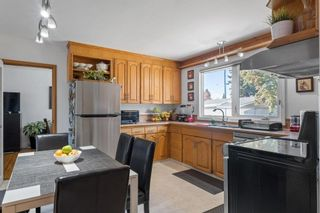 Photo 15: 279 Lynnwood Way NW in Edmonton: Zone 22 House for sale : MLS®# E4265521