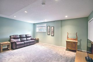 Photo 34: 73 Canals Circle SW: Airdrie Detached for sale : MLS®# A1104916