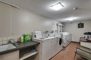 Photo 27: 307 903 19 Avenue SW in Calgary: Lower Mount Royal Apartment for sale : MLS®# A1152500