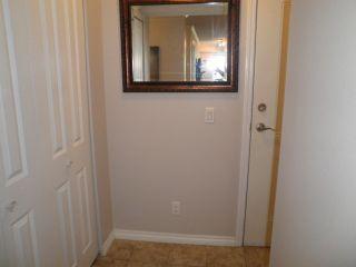 Photo 10: 206 22255 122 Avenue in Maple Ridge: West Central Condo for sale : MLS®# R2086650
