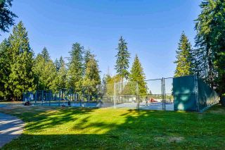 """Photo 24: 118 1040 KING ALBERT Avenue in Coquitlam: Central Coquitlam Condo for sale in """"BLUE MOUNTAIN TERRACE"""" : MLS®# R2566540"""