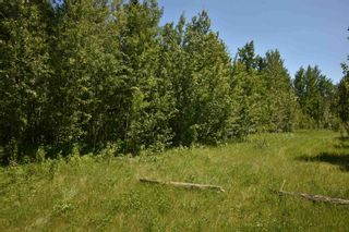 Photo 3: 18 Village West: Rural Wetaskiwin County Rural Land/Vacant Lot for sale : MLS®# E4251065