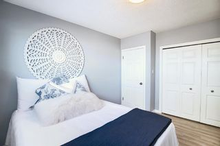 Photo 20: 412 33 Avenue NE in Calgary: Winston Heights/Mountview Semi Detached for sale : MLS®# A1068062