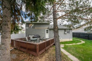 Photo 37: 8416 19 Avenue in Edmonton: Zone 29 House for sale : MLS®# E4248440