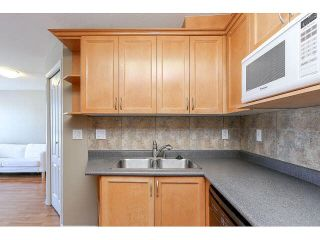 """Photo 14: 302 189 ONTARIO Place in Vancouver: Main Condo for sale in """"Mayfair"""" (Vancouver East)  : MLS®# V1132012"""