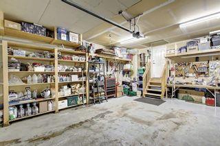 Photo 33: 8418 SADDLERIDGE Drive NE in Calgary: Saddle Ridge Detached for sale : MLS®# C4287136