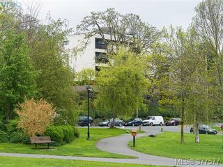 Photo 14: 201 3277 Glasgow Ave in VICTORIA: SE Quadra Condo for sale (Saanich East)  : MLS®# 758094