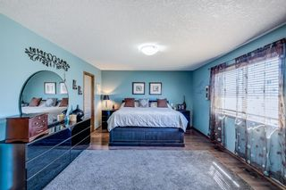 Photo 14: 230 Panamount Villas NW in Calgary: Panorama Hills Detached for sale : MLS®# A1096479