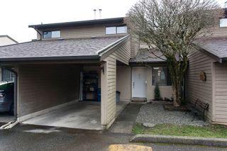 "Photo 8: 31 20653 THORNE Avenue in Maple Ridge: Southwest Maple Ridge Townhouse for sale in ""THORNEBERRY GARDENS"" : MLS®# R2032764"