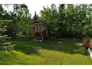 Photo 18: 1462 CHESTNUT Street: Telkwa House for sale (Smithers And Area (Zone 54))  : MLS®# N236621